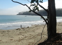 The beach at San Simeon is a beautiful, almost deserted stretch of sand, that  resembles a pirate's cove.